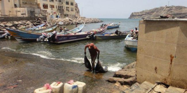 40مليون دولار صادرات اليمن من الأسماك